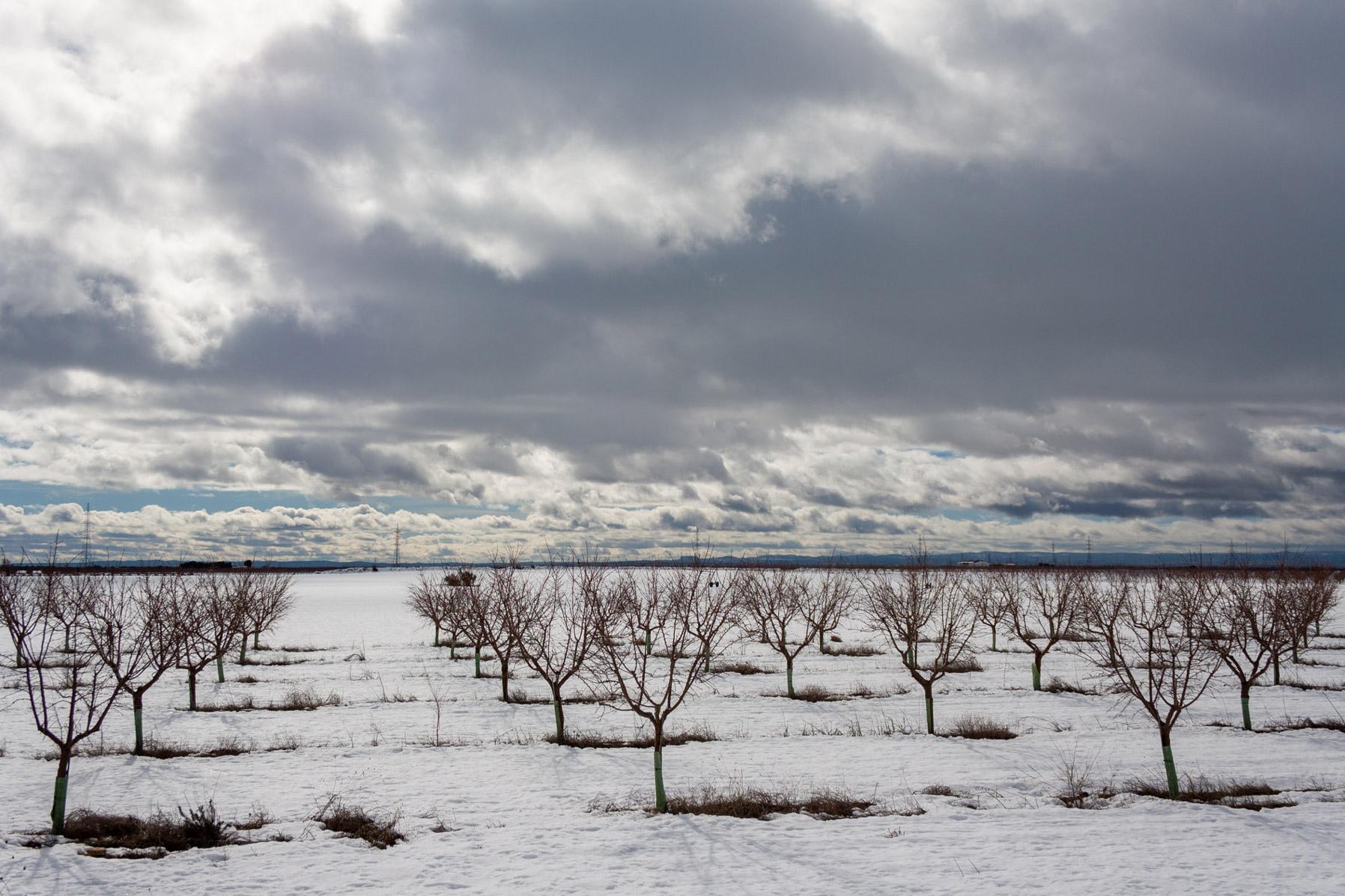 campos-cultivo-acequion